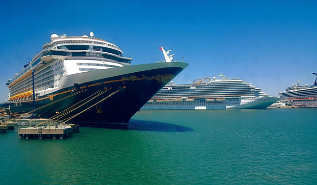 Cruise January 2020.Port Canaveral Florida Cruise Port Schedule January April